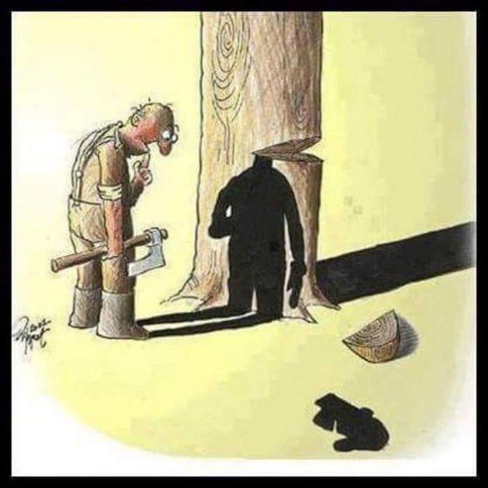 dessins-satire-illustrations-societe-2-696x696