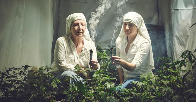pousser-du-cannabis