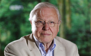 sir-david-attenborough