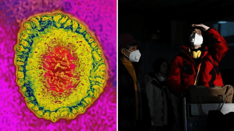 Virus Chine